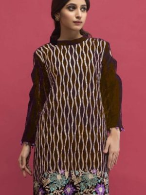Panachi Latest Embroidered Velvet 2 pc Winter Collection Replica