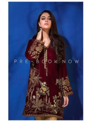 Baroque Luxury Embroidered Winter Velvet Collection Replica