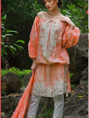 Nomi ansari Luxury Embroidered Winter Linen Collection Replica