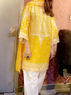 Agha Noor Luxury Embroidered Chiffon Collection Replica