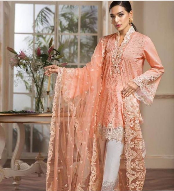Anaya Latest Embroidered Lawn Replica 2019
